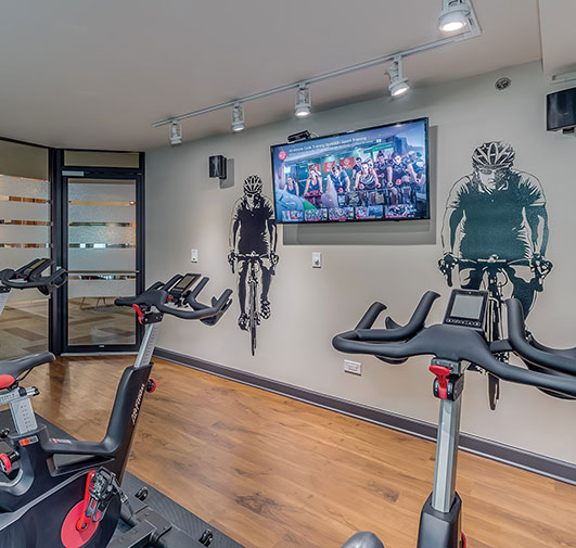 Eldridge Townhomes in Elmhurst, IL - Gym